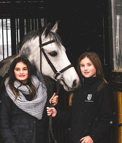 Winter Horse Riding Camps Learn to Ride Equestrian Riding Academy Riding Lessons Horse Care Equestrian Coaching Stonewood Riding Academy